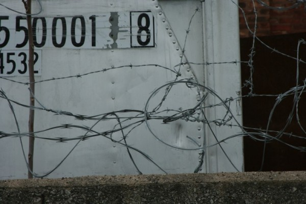 A tangle of barbed wire