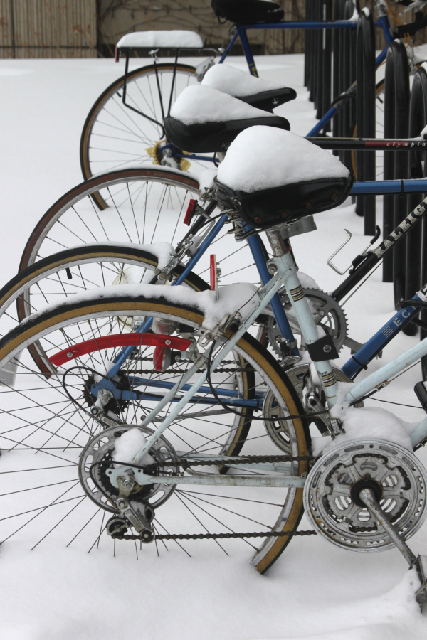 Snow covered bikes on University of Chicago campus