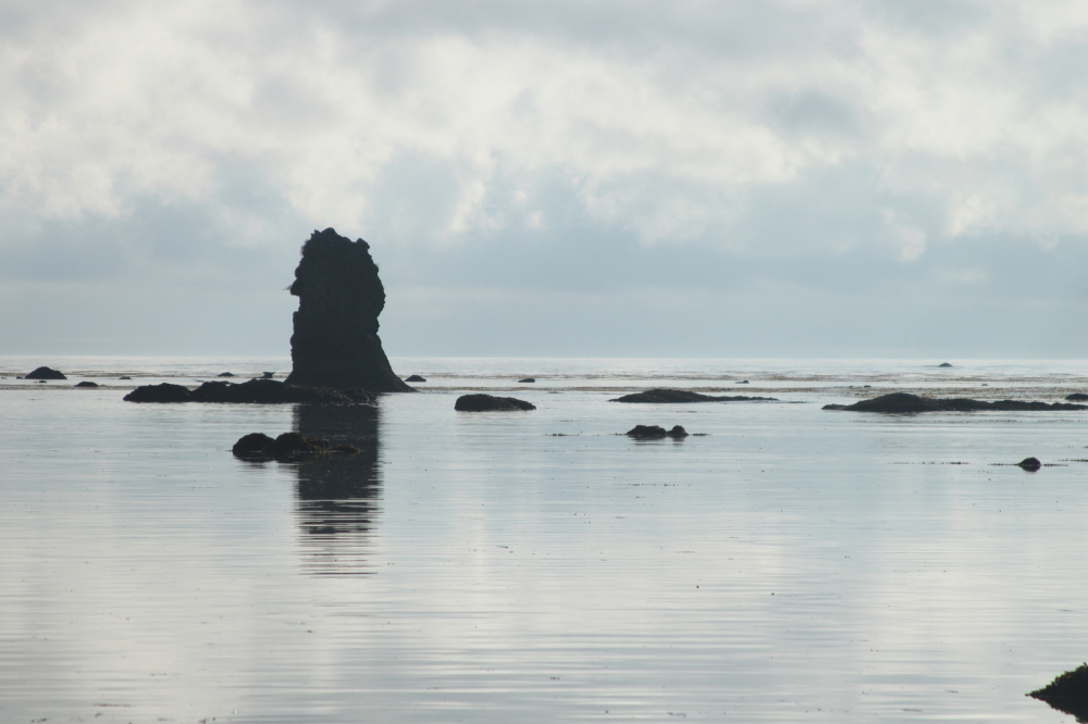Sea Stack in Olympic National Park