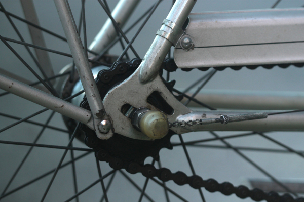 Part of bicycle wheel and chain