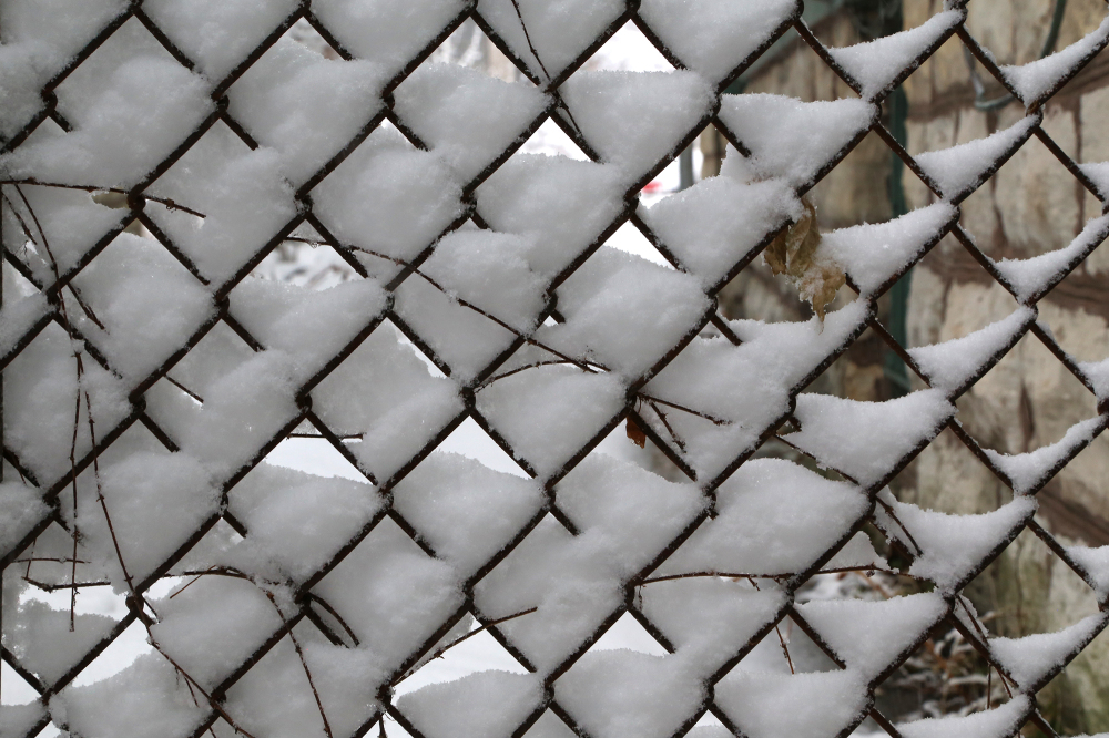 Snow clinging to fence