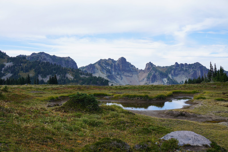 Pond and ridge seen from Spray Park, Mt. Rainier