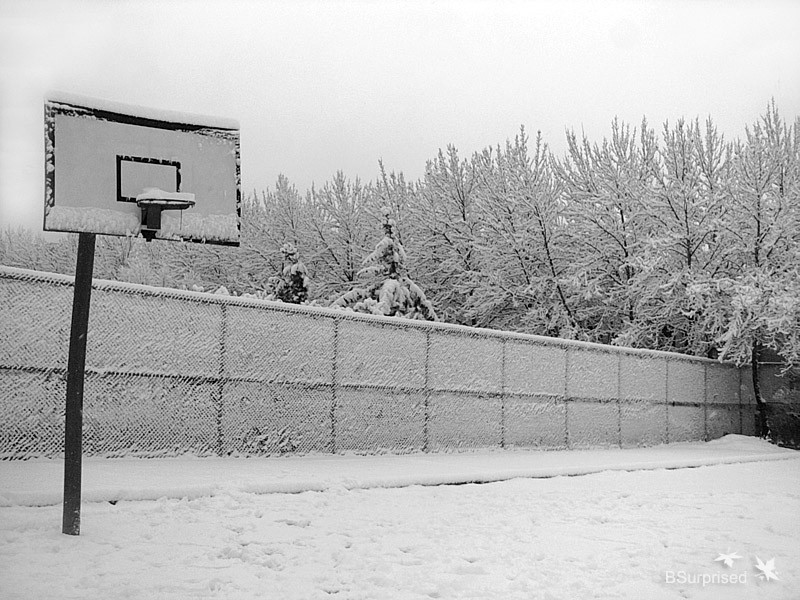 Winter Season Basketball