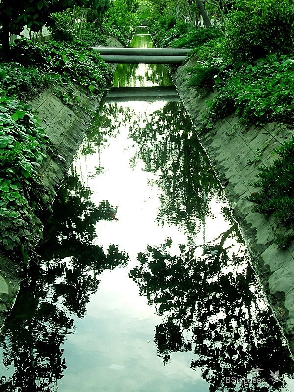 Reflected Path