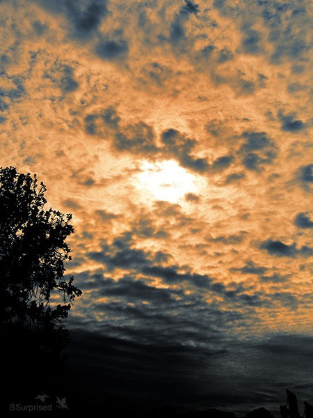 I Believe in the Sun