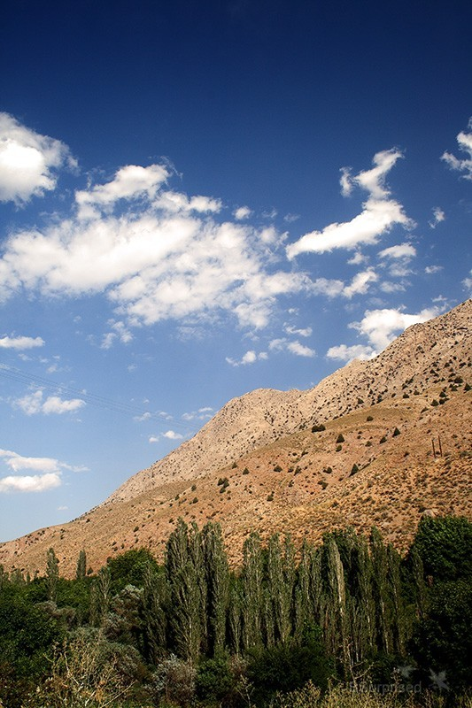 Rudafshan View