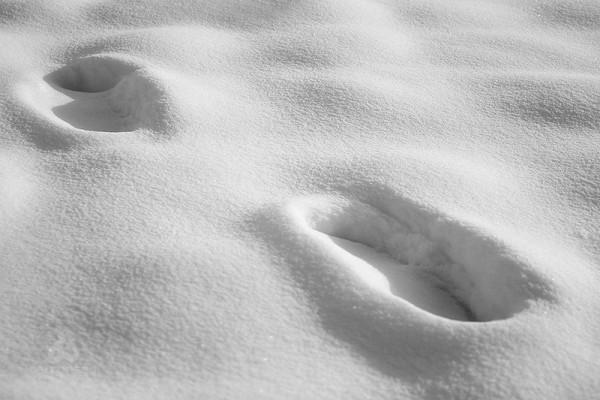 Footsteps (II)