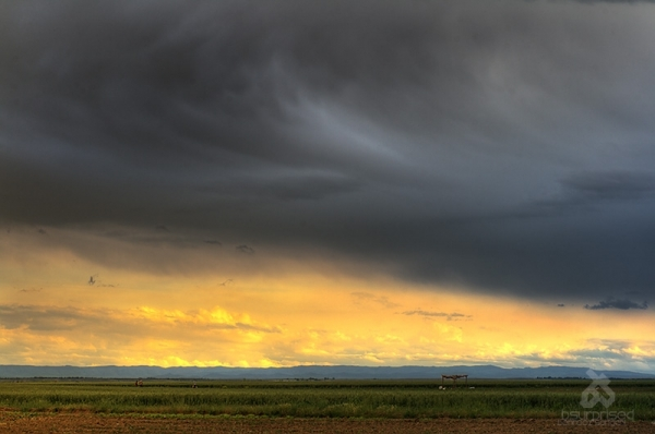 Sunset in Moghan Lands