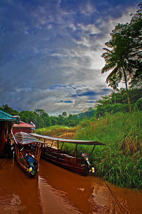 Morning in Taman Negara