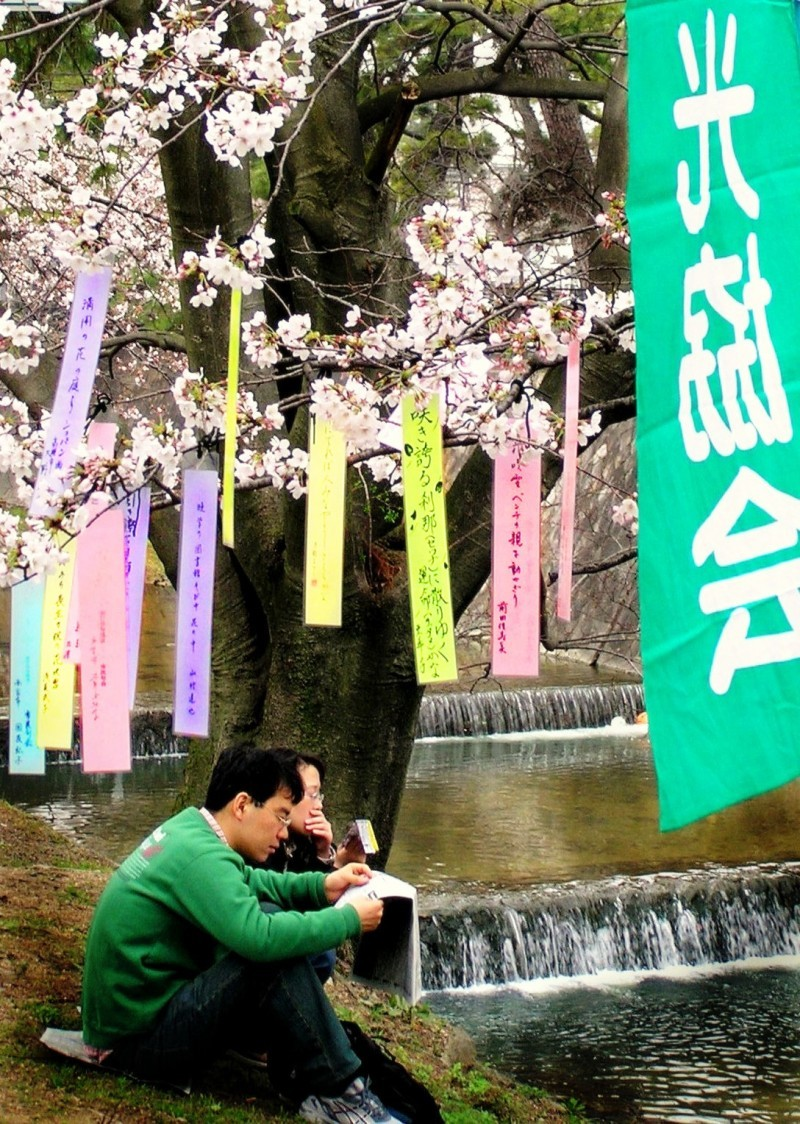 Shukugawa hanami haiku Japan