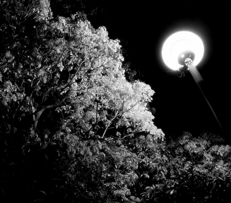 park light night sonoda amagasaki japan
