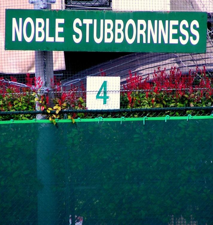 Noble Stubbornness uegahara kwansei gakuin japan