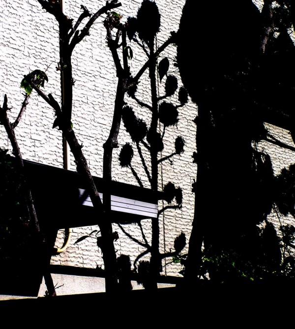In the Garden, Amagasaki 2