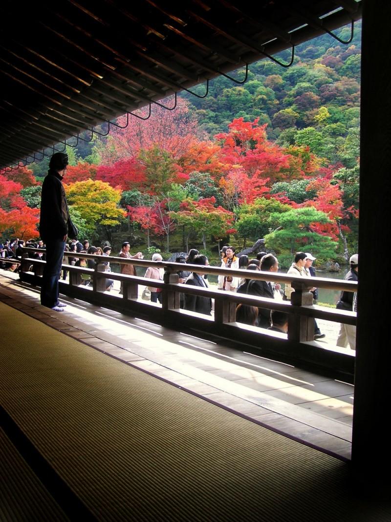 Tenryu-ji temple Arashiyama, Kyoto garden japan