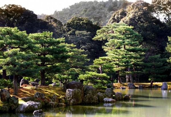 Kinkakuji temple Kyoto garden Japan