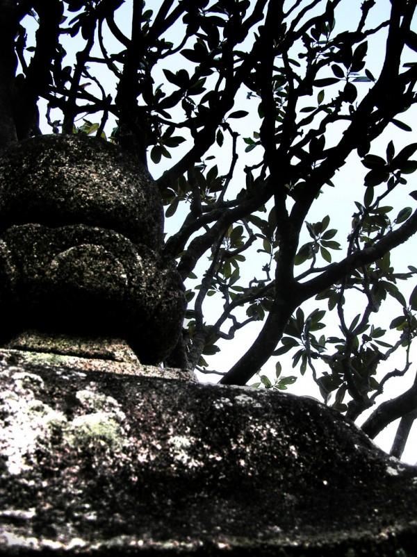 Stone Lantern, Yakuoji Temple Hiwasa