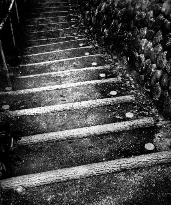 Path through the Park, Uegahara 2