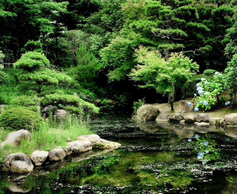 Garden Kwansei Gakuin university Nishinomiya Japan