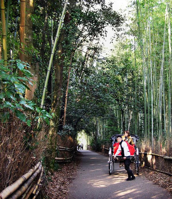 Exploring Arashiyama