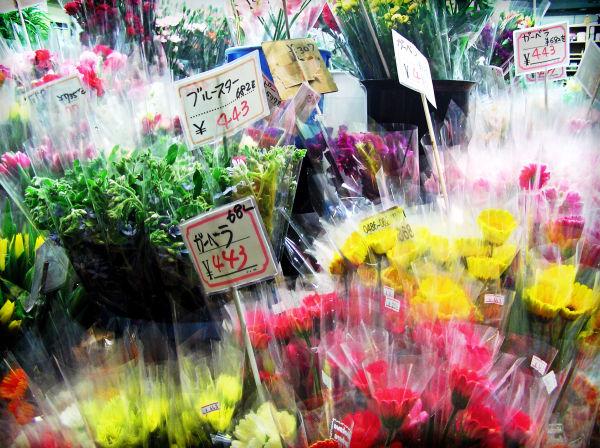 florist flowers plastic Osaka Japan