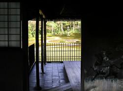 Nara garden Japan screen