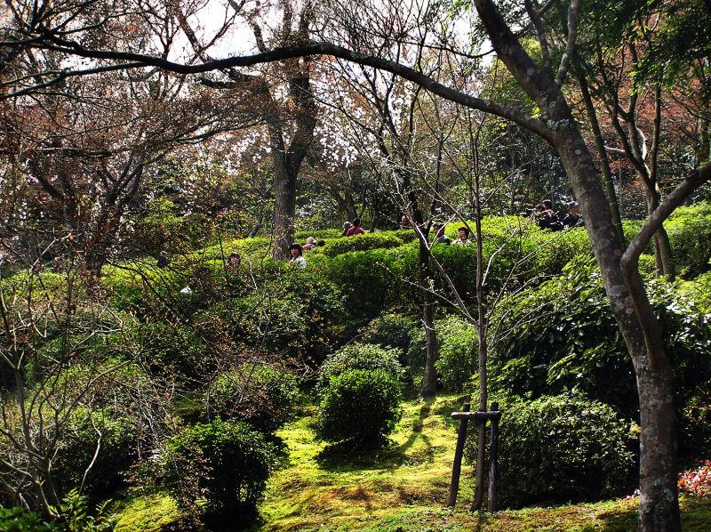 Tenryu-ji temple Arashiyama Kyoto Japan garden