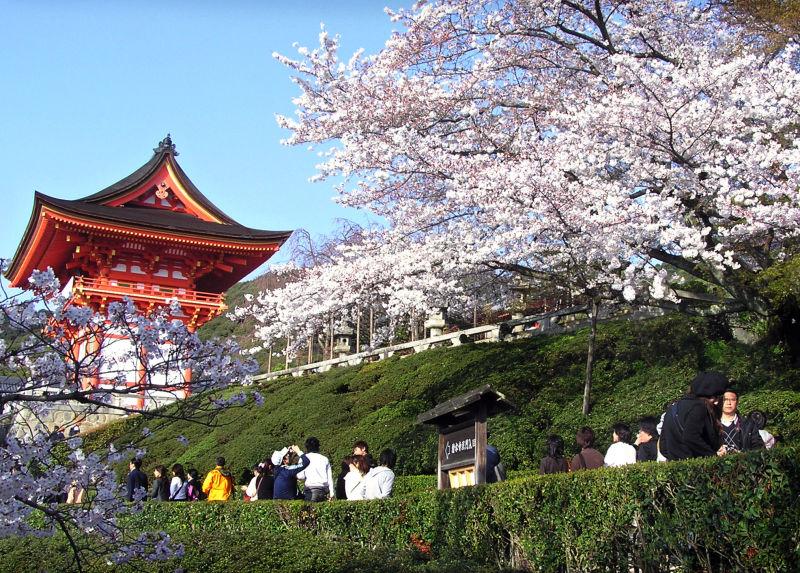 Kiyomizu-dera Japan Kyoto sakura pagoda