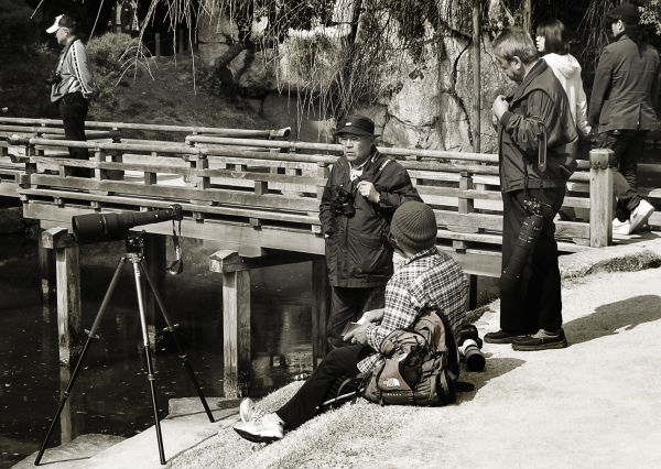 Photographers, Korakuen