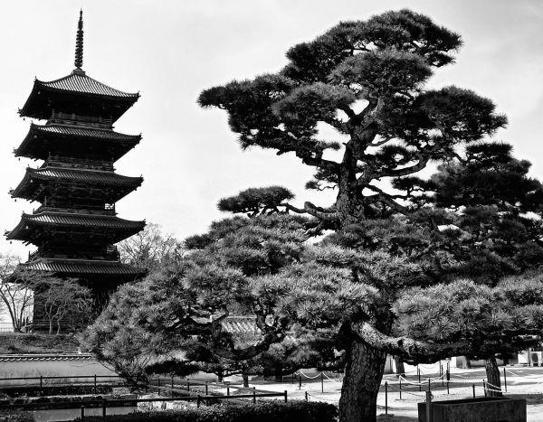 Bitchu Kokubunji, Okayama 3