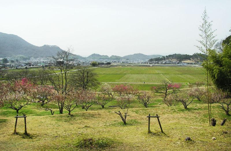 Bitchu-Kokubunji Okayama Japan temple Kibi field