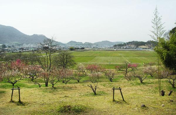 Bitchu Kokubunji, Okayama 7