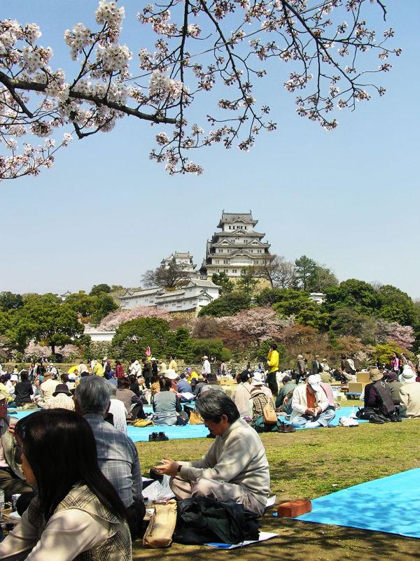 Springtime at Himeji Castle