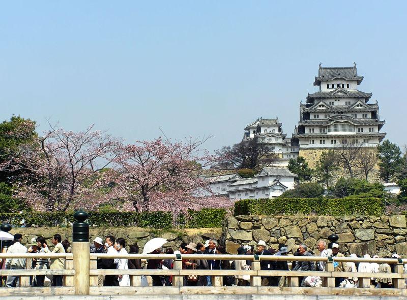 Himeji castle blossom sakura park bridge Japan