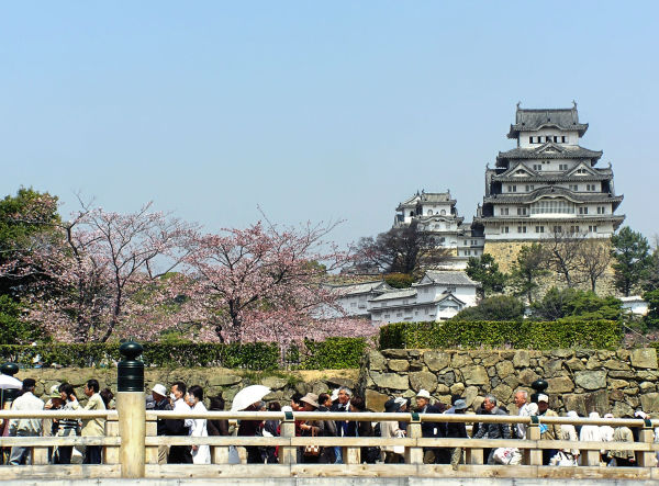 Springtime at Himeji Castle 2
