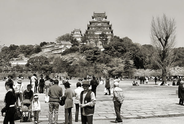Springtime at Himeji Castle 3