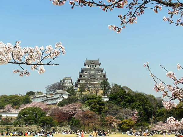 Springtime at Himeji Castle 9
