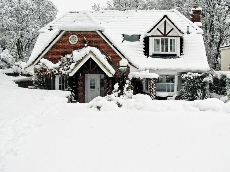 Farnham England snow tree garden house