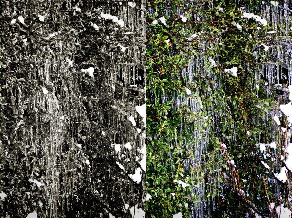 Winter in Farnham 26