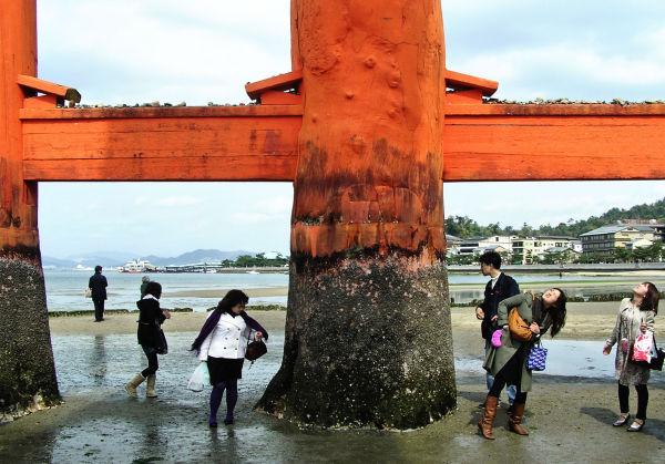 Torii, Itsukushima Shrine 7