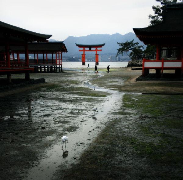 Low Tide, Itsukushima Shrine