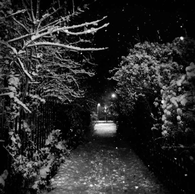 snow England New-Malden tree bridge lamp