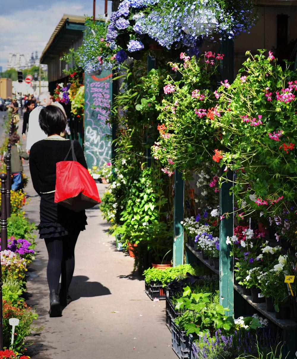 paris france flower market tourist