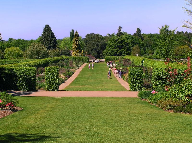 england wisley garden tree tourist