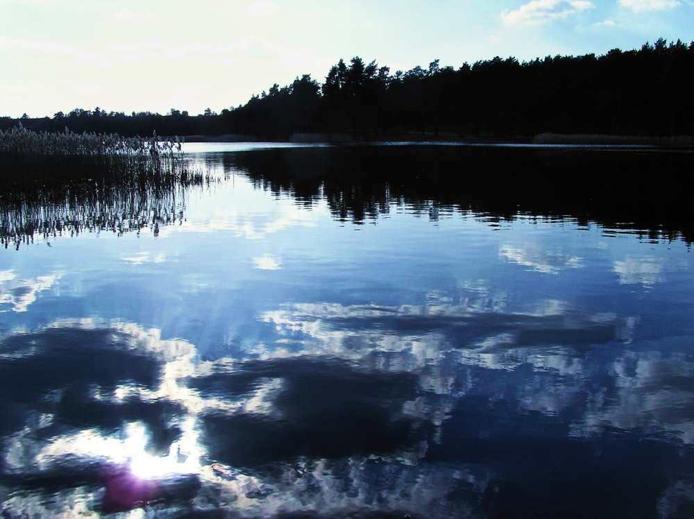 frensham-ponds farnham england pond forest