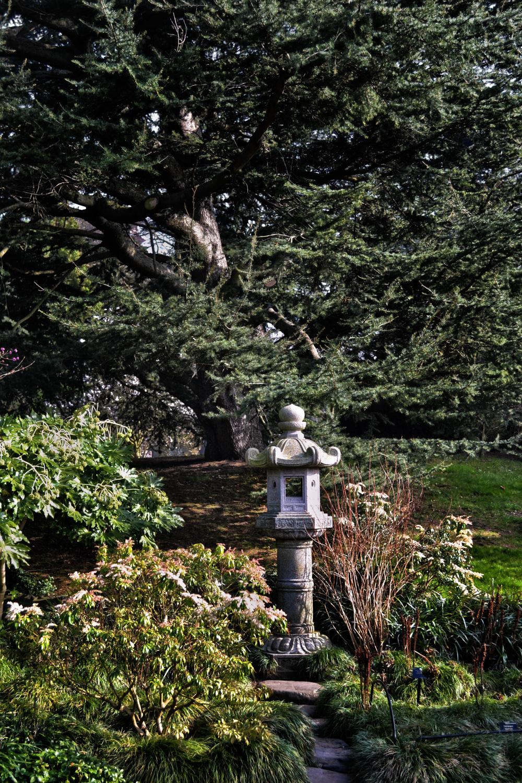 kew-gardens england lantern garden tree japan