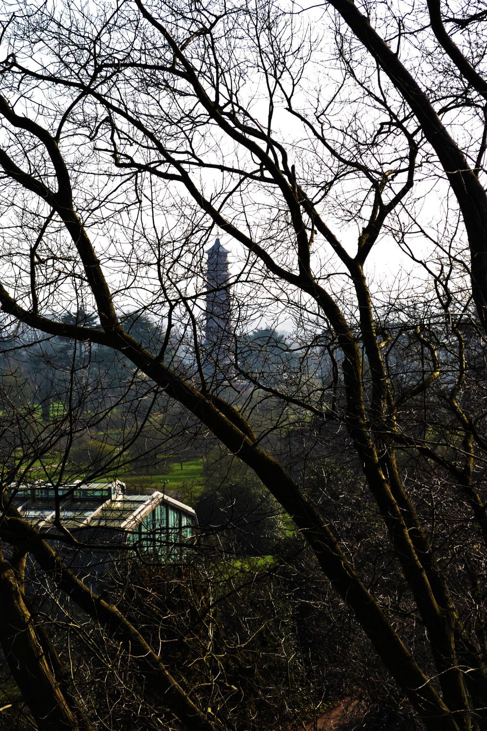 kew-gardens england xstrata tree pagoda
