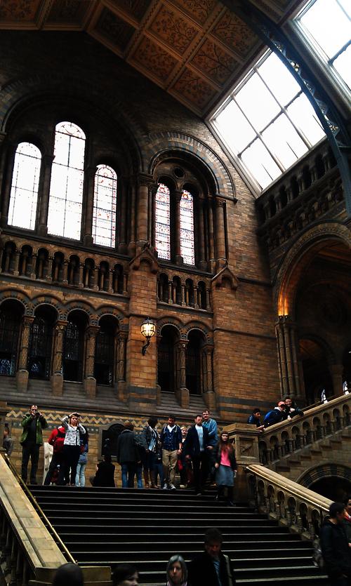 london england kensington museum tourist