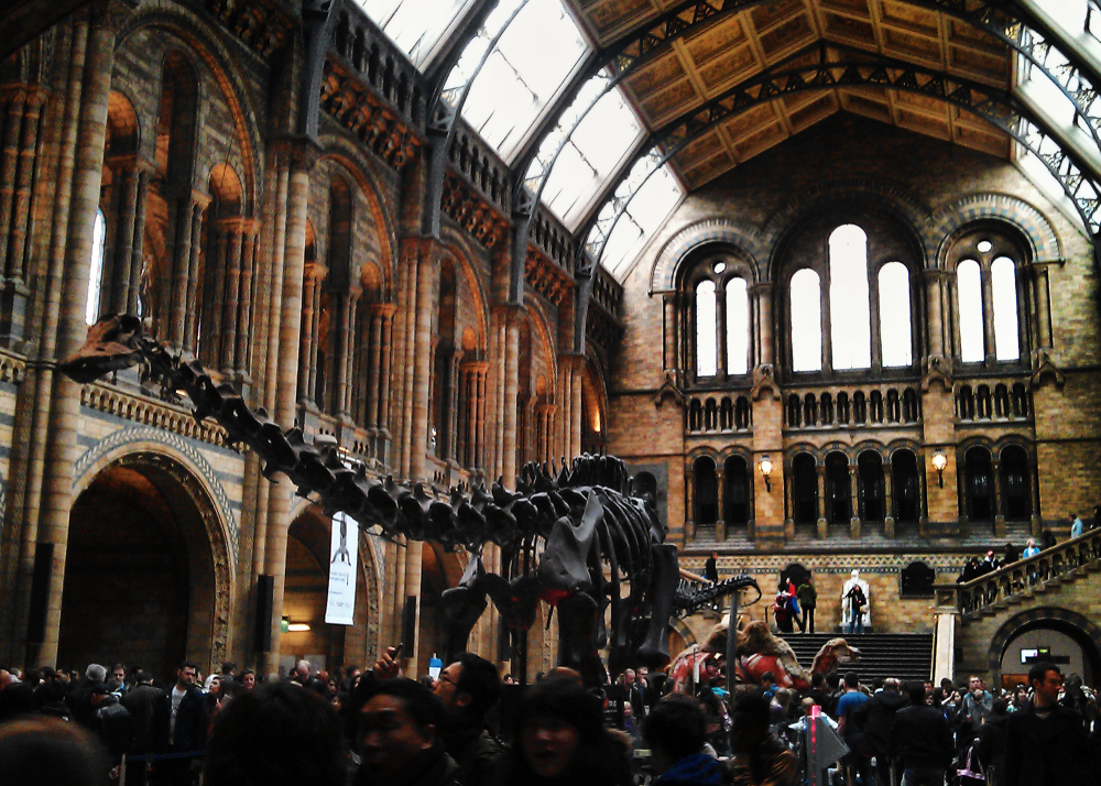 london england kensington museum tourist dinosaur