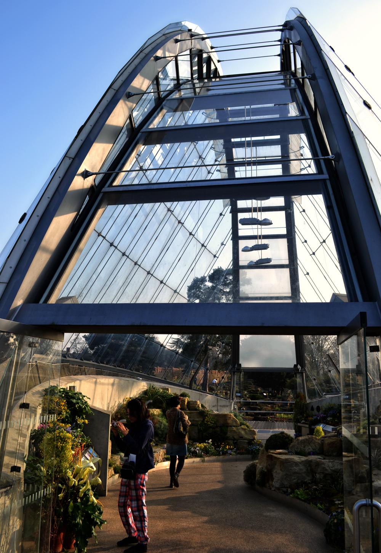 kew-gardens england greenhouse
