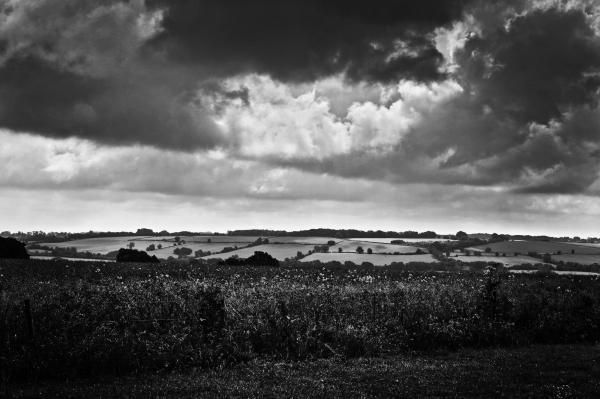 Cotswolds Landscape 2